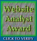 Website Analyst Award April 24, 2001